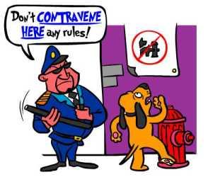 spanish-verb-contravenir-contravene