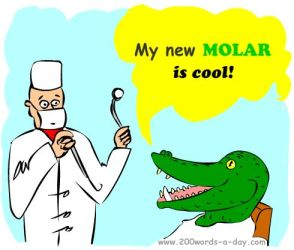 spanish-verb-molar-be cool