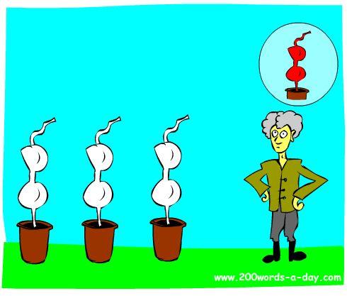 spanish-verb-sembrar-plant